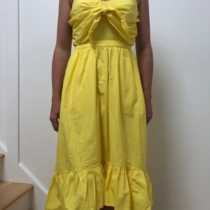 Joei Clorinda Dress NWOT